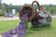 Около 94 тысяч цветов различных сортов будут высажены на городские клумбы в начале июня