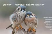 Проект птицы рядом с нами